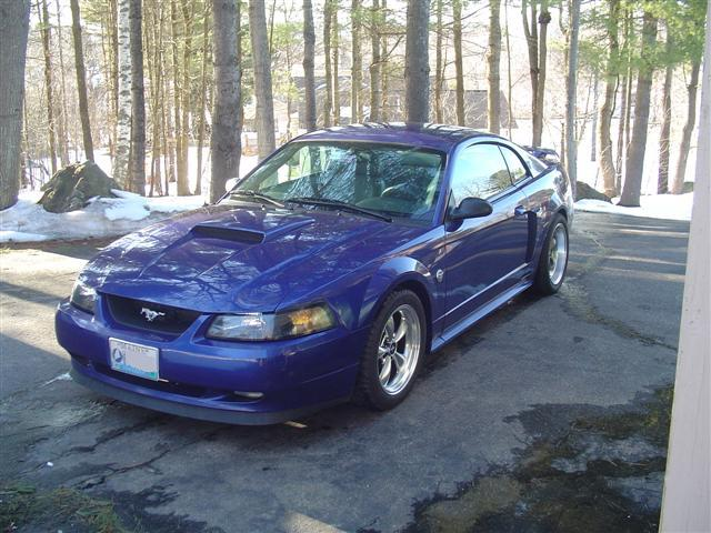 Click image for larger version  Name:stang01 (Small).JPG Views:169 Size:72.5 KB ID:1093