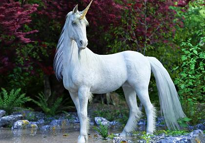 Click image for larger version  Name:unicorn.jpg Views:3 Size:149.0 KB ID:2731